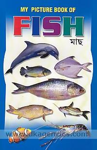 My picture book of fish =  Macha.