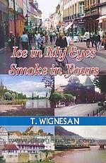 Ice in my eyes, smoke in yours :  a novel /